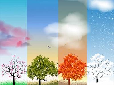 4 Mevsim Kullanım